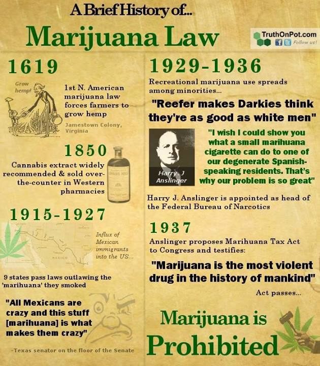 a history of marijuana use and research Comparing alcohol and marijuana:  and deeply entrenched in western history marijuana,  recent research suggests that even casual use,.