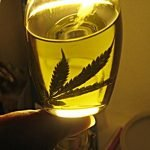 Miracle Marijuana Oil