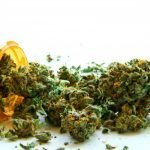 Health Benefits from Medical Marijuana