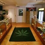 What's in Marijuana Dispensaries?
