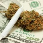 Legalizing Marijuana – Yay or Nay?