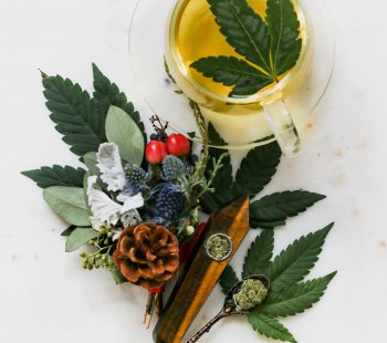 Cannabis Thirst Quenchers