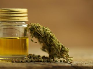 Making Medical Marijuana Oil