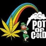 Pot of Gold: The Marijuana Rush