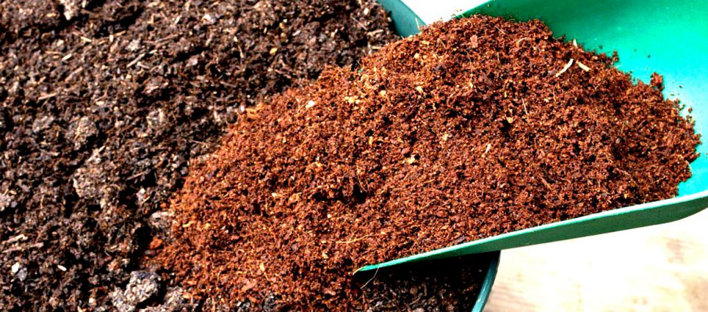 Coco coir mix with regular soil